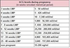 What Were Your Hcg Levels At 4 Weeks Nervous May 2018