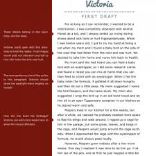 cover letter template for examples of anecdotes in essays next   anecdotal essay example cover letter template for examples of anecdotes in essays college essay essays