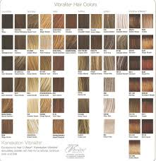 Raquel Welch Wigs Color Chart Play It Straight Wig Style Sheer Indulgence Collection