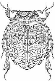 Small Picture Coloring Pages Me Beetles Free Beetles Bug Coloring Page Coloring