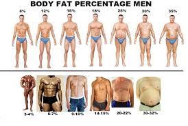 body mass