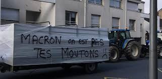 """Résultat de recherche d'images pour """"images manifestations agriculteurs contre mercosur"""""""