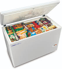Image result for freezer pic