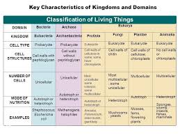 Biological Classification Chart Classification Of Living Things Chart Science Biology