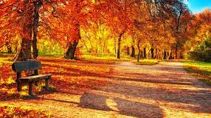 16+ Hd Wallpapers 1080p Nature Autumn ...