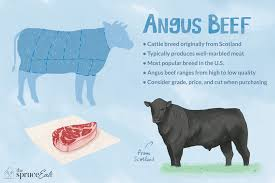 What Is Angus Beef