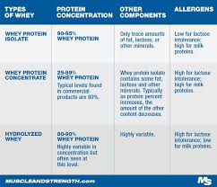 Protein Absorption Chart Whey Protein Expert Guide Learn Everything About Whey