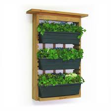Small Picture 45 best Indoor Designs images on Pinterest Herbs garden Indoor
