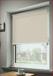 Fenster Verdunklung