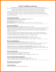 Internship Resume Template Resumes Word No Experience Templates Free