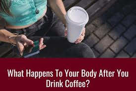 How long does alcohol stay in your system? Do You Know What Happens When You Drink Coffee Timeline