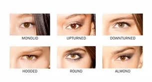 the diffe eye shapes in one chart