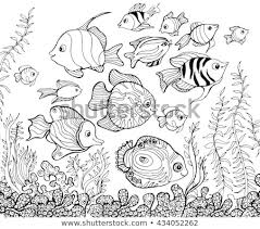 Outline Drawing Underwaterfishcoloring Pages Kids Stock Vector