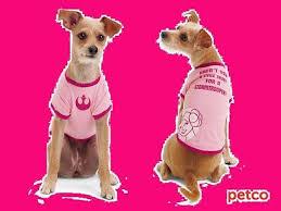 Petco Dog Collar Size Chart Petco Star Wars Princess Leia Dog Tee T Shirt Pink Stormtrooper Small Pet Fans S 800443928110 Ebay