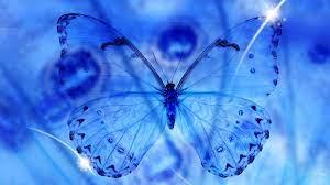 Blue Butterfly Wallpaper HD ...