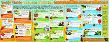 25 Abiding Vitamins Minerals Proteins Fats Carbohydrates Chart
