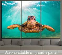 hawaiian green sea turtle pacific ocean in hawaii 1859 ready to hang canvas print canvas print zellart canvas arts on sea turtle canvas wall art with hawaiian green sea turtle pacific ocean in hawaii 1859 ready to
