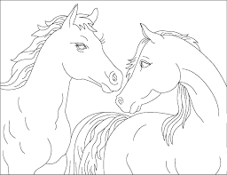 Horse Coloring Pages Couple Coloringstar