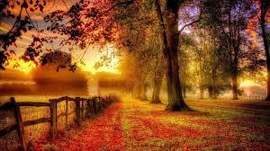 Kết quả hình ảnh cho hình ảnh động mùa thu lá rơi