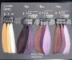 Hair Color Guy Tang My Identity Dusty Lavender Demi