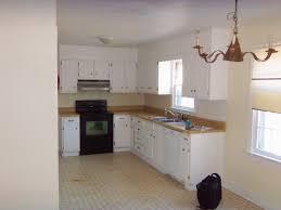 Small White Kitchen Designs Small L Shaped Kitchen Design Ideas Kitchen Design L Shaped