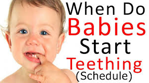 Teething Chart Babies When Do Babies Start Teething Baby Teething Chart Baby Teething
