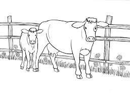 Small Picture Cow And Calf Coloring Pages GetColoringPagescom