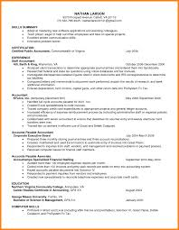 Examples Of Professional Summary For Resume Tomyumtumweb Com