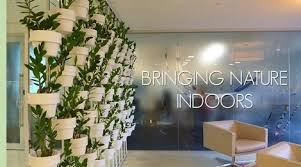 office indoor plants. Indoor Plant Hire | Office Plants Dandenong Hawthorn South Melbourne CBD O