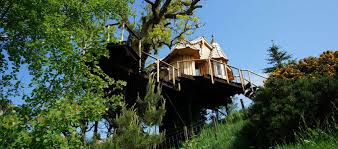 Brockloch Treehouse  Scotland Tucked Away In The  Luxury Treehouse Scotland