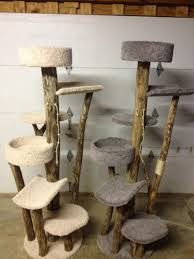 cat tree with natural wood  cats  pinterest  cat tree cat and