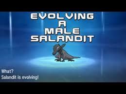 Evolving A Male Salandit In Pokemon Sun And Moon Youtube