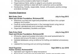 Perfect Entry Level Resume Sarahepps Com