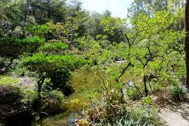 file modern romantic garden morikami museum and japanese gardens palm beach county florida dsc03408 jpg