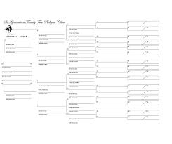 Genealogy Fan Chart Excel Jasonkellyphoto Co