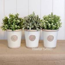 Image is loading LARGE-HERB-POTS-CREAM-SET-OF-3-KEW-