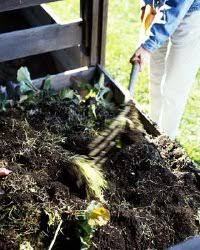 compost garden. Beautiful Compost A Compost Pile Can Serve Many Uses In The Vegetable Garden See More  Pictures Of With Compost Garden P