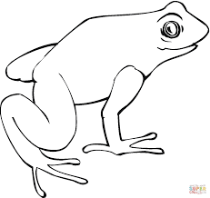 Small Picture Action coloring pages frog Frogs Coloring Pages Free Frog 18