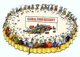 Four Threats To Global Food Security And What We Can Do
