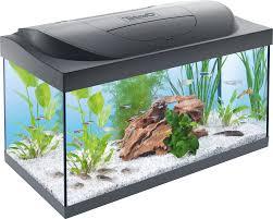 Nice Tetra Starter Line LED 54L Aquarium