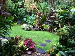 Small Picture Top 25 best Jungle gardens ideas on Pinterest Small garden