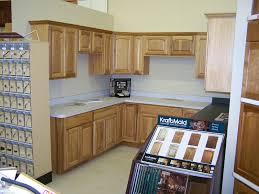20 20 Cad Program Kitchen Design Interior Interesting Decorating Design