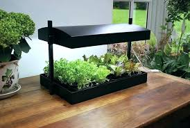 indoor herb garden kit indoor garden kit indoor herb garden lights kit with light awesome kits