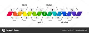 Acid Alkaline Chart Alkaline Diet Chart Stock Vectors Royalty Free Alkaline