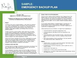 Sample Small Business Plans Business Plan Contingency Plans For Businesses International ...