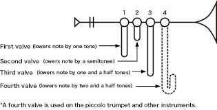 The Structure Of The Trumpet How Does The Trumpet Generate