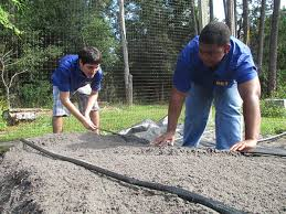 Gardening Program Provides Opportunity For Students With ...