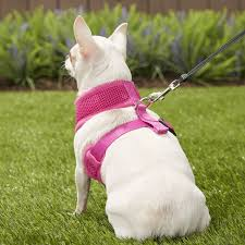 Ecobark Maximum Comfort Dog Harness Pink X Small