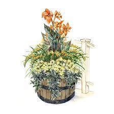 Tropical Flair Container GardenBhg Container Garden Plans