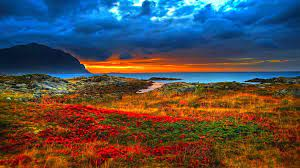 Download Awesome Nature Wallpapers in ...